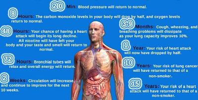Stop-smoking-benefit-timeline1
