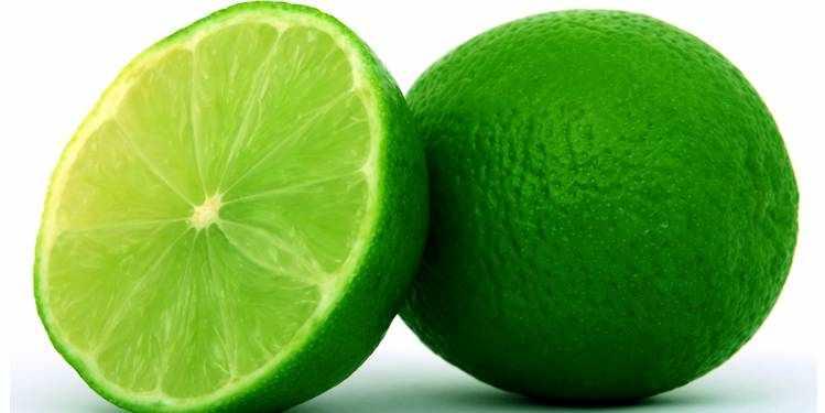 %e0%a6%b2%e0%a7%87%e0%a6%ac%e0%a7%81-lemon