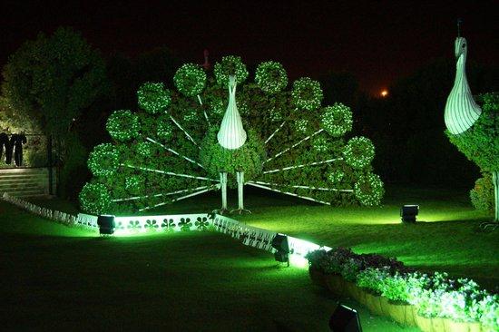 miracle-garden